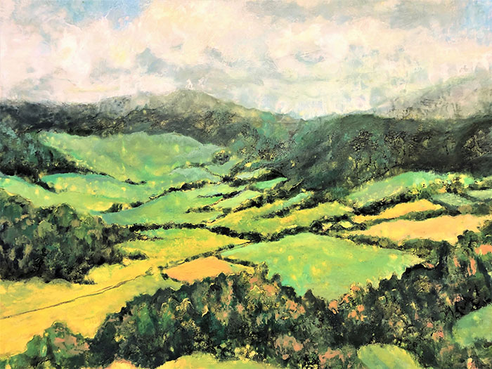 rolling green valley